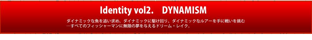 Identity vol2. DYNAMISM